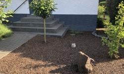 Gruselgarten 4